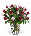 Two-Dozen Red & Pink Birthday Roses