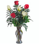 Half-Dozen Red & White Prom-Wedding Roses