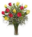 One-Dozen Red & Yellow Roses
