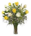 1-Dz White & Yellow Love Roses