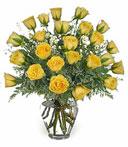 2-Dz Yellow Birthday Roses