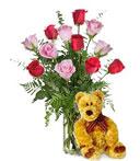 Bear w/ 1-Dz Red & Pink Roses