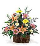 Brimming Spring Sympathy Basket