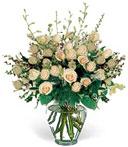 Orchids & 2 Dz Roses Galore