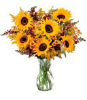 Timeless Sunflowers