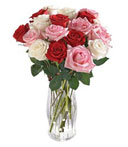 18 Assorted Roses