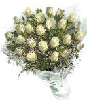 2 Dozen White Roses Bouquet