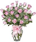 2 Dozen Lovely Roses