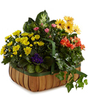Luck and Prosperity Garden Basket